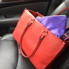 Client's Olyvia Bag
